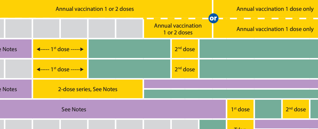 An excerpt of a chart by the CDC showing recommended vaccine schedules. It's broken down into blocks to show the different ages when each dose of each vaccine is given.